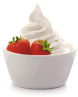 Simple Vanilla Frozen Yogurt Recipe