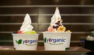froyo organic